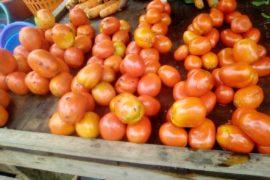 tomato New Deido Market in Douala